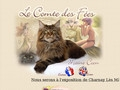 Chatterie du Comte des Fées elevage maine coon index
